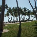 The beautiful grounds and beach at the Casa!