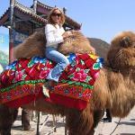 A CAMELLO EN LA GRAN MURALLA CHINA