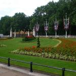 Garden at Buckingham