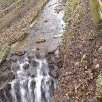 Running streams