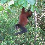 Wildlife Sanctuary visit