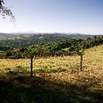 Beautiful views and walks on the property