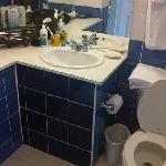 Historic Villa - Nice Toilet