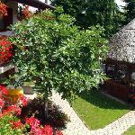 Blumige Hof mit Sonnenliegen und Pergola