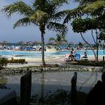 Mares pool view from buffet