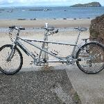 Our tandem bicycle - available for hire