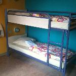 Comfortable and clean dorm beds