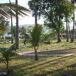 Vista del parque del hotel