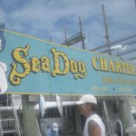 ‪Sea Dog Fishing Charters‬