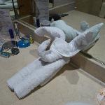 bathroom (towel)
