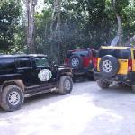 The ONLY way to travel in the jungle!