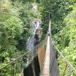 a 120m and 40m high hanging bridge