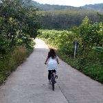 Bike ride through Ko Yao Noi