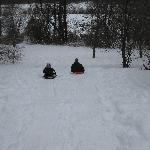 sledding out back