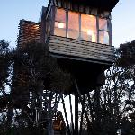 Tree House - single bedroom
