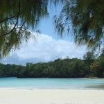 Ngemelis Island