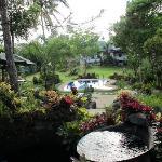 Nurture Wellness Village Foto