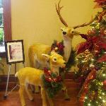 reindeer in lobby