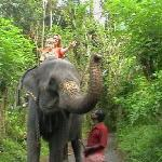 Taking an elephant ride