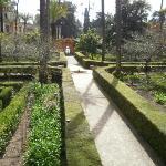 Jardin del Laberinto de los Reales Alcazares