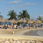 view of beach from buffett
