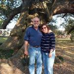 Oldest tree in Lake Charles, Louisiana