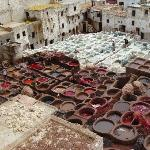 Fes (Morocco) - Tanneries