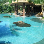 the beautiful swim-up bar pool