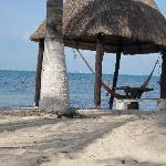 Palpa and hammock