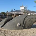 Whale sculpture near playground at Saint Simons Island, GA, United States