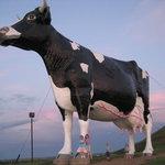 Salem Sue - World's Largest Fiberglass Cow