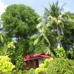 Chaweng Villa