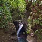 Denier waterfall, near Rosalie