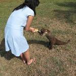 Me feeding Pootsy a banana