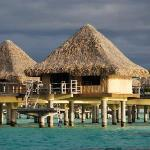 Our bungalo from the Shark Dive boat  #11