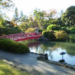 View of the Japanese garden