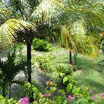 Silver Beach Gardens