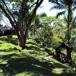 Garden and Yoga Pavillon