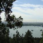 from the Summer Palace