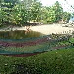 Hammock and freshwater swimming hole