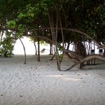 la spiaggia vicina alla nostra stanza - lato nord isola