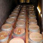 Barrels at Casa Nuestra
