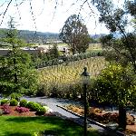 View from St. Clement winery porch
