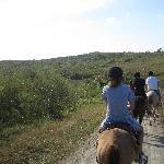 Horseback riding in the park