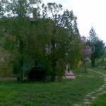 belmondo farm