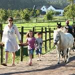 Family Paradise at Kurland
