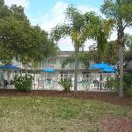 Venice Motel 6 pool