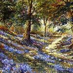 bluebell wood by ken taylor
