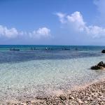 One of the amazing beaches