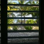 the view from our bedroom